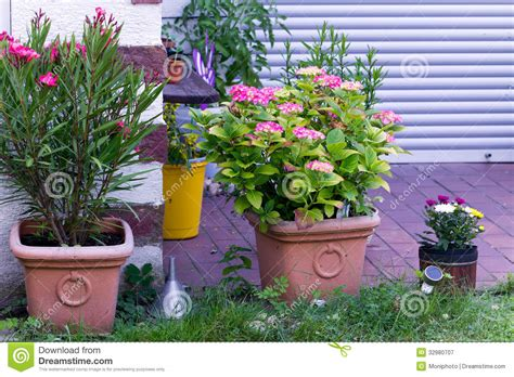 Blumentöpfe Im Garten Lizenzfreie Stockfotografie Bild