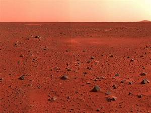 Gulf imams issue fatwa warning Muslims not to live on Mars ...