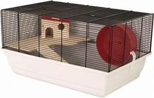 Holzhaus Für Kleintiere : die besten 25 ideen zu zwerghamster auf pinterest ~ Lizthompson.info Haus und Dekorationen