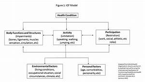 Icf Model  A Framework For Athletic Training Practice