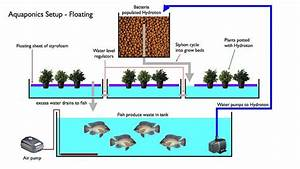 Complete Guide To Diy Aquaponics And Aquaponic Gardening
