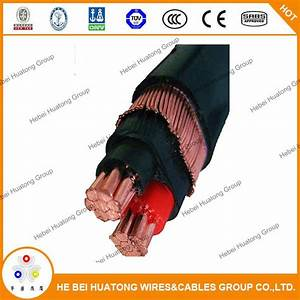 China 2  25mm2 Concentric Cables Xlpe Insulation Pvc