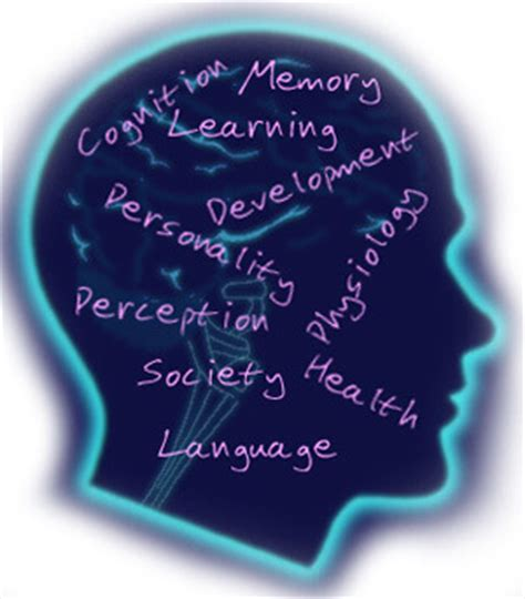 Counseling Psychology Degree  Best Counseling Degrees. June Signs. Foot Infection Signs Of Stroke. Cheat Sheet Signs Of Stroke. Recycled Wood Signs. Dry Signs Of Stroke. Coloring Signs. Thought Signs. Punjabi Language Signs
