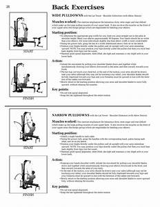 Back Exercises  Wide Pulldowns  Muscles Worked