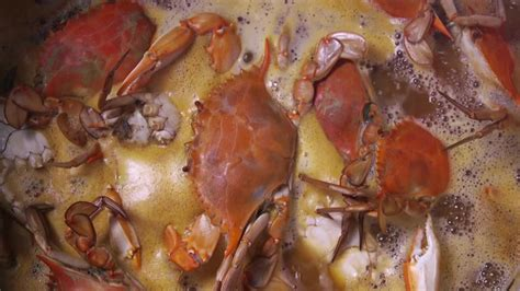 how to boil crabs how to boil blue crabs the southern weekend