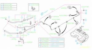 2006 Subaru Impreza Evaporative Emissions System Lines