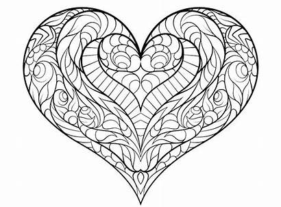 Coloring Pages Adults Hearts Heart