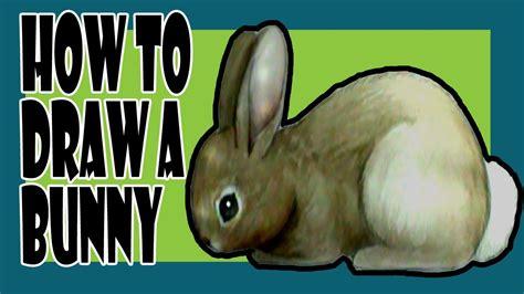 draw  bunny youtube