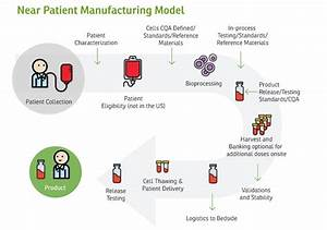 Manufacturing Cell Therapies: The Paradigm Shift in Health ...