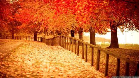 Beautiful Autumn Wallpaper  1920x1080 #29447