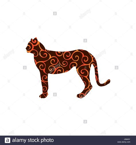 Jaguar Cat Isolated Stock Photos & Jaguar Cat Isolated ...
