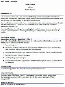 Objective Examples For Customer Service Bank Staff Cv Example Icover Org Uk
