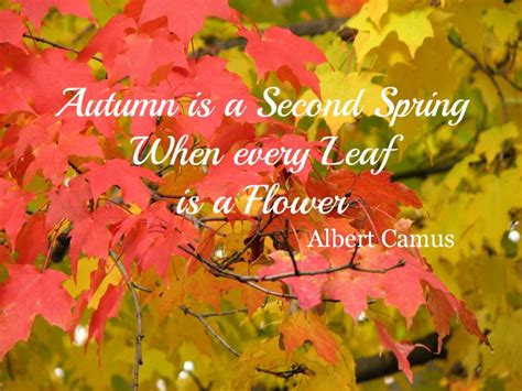 Autumn Quotes Quotesgram