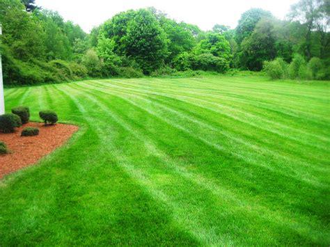 landscape lawn lawn care www imgkid com the image kid has it