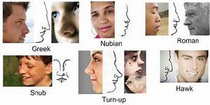 Common Nose Type and Connection with Ethnicity and ...