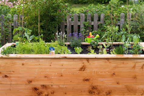 Garten Hochbeete Selber Bauen by Hochbeet Selber Bauen Hausbau Garten Diy