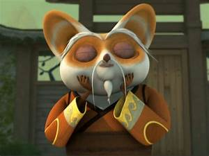 Kung Fu Panda Master Shifu Inner Peace