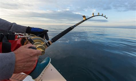 Boat R Fees Victoria by Recfishing Licence Fees Increase To Benefit Recreational