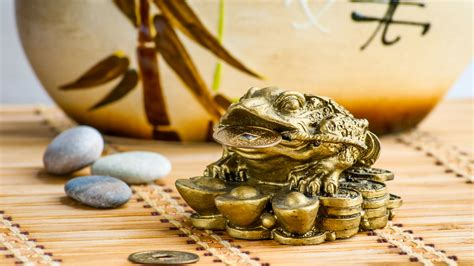Simple Tips To Feng Shui Your Home  Platinum Properties