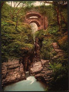 foto de Image result for rosa moss bridges ireland Places of