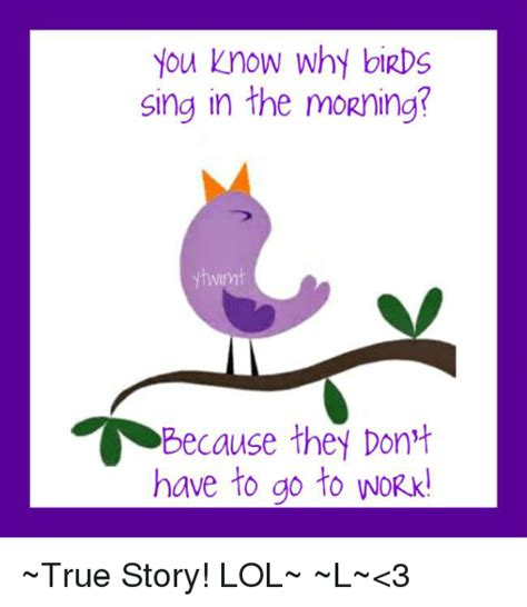 you know why birds sing in the morning because they don t