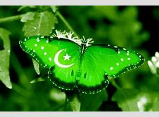 Pakistan Flag Pictures