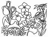 Coloring Flowers Flower Pages Printable Floral Printables Printing Garden sketch template