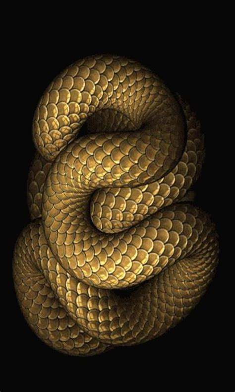 Animated Snake Wallpaper - snakes snakes wallpapers
