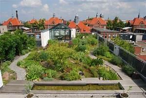 Extensive Dachbegrünung Pflanzen : intensive und extensive dachbegr nung kologisch und konomisch gut ~ Frokenaadalensverden.com Haus und Dekorationen