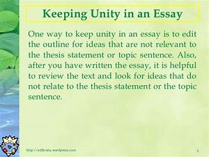 Unity In Diversity Essay Sports And Drugs Essay Unity In Diversity  Unity In Diversity Essay For Class  Pdf Business Ethics Essay Topics also How To Write An Essay In High School  Examples Thesis Statements Essays