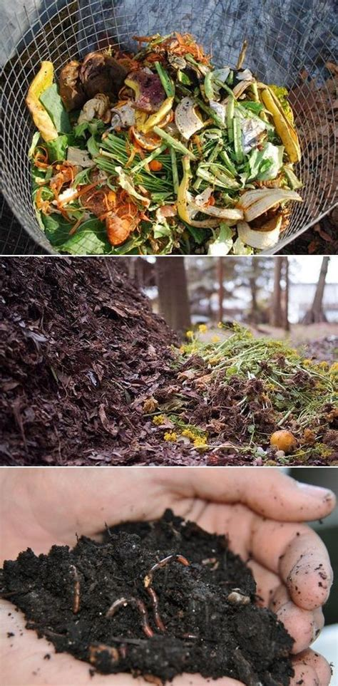 tips composting gardening safe compost garden plants collect bego fenix alternative tutorials soil hairstyle handling funny brown later degradacion lawn