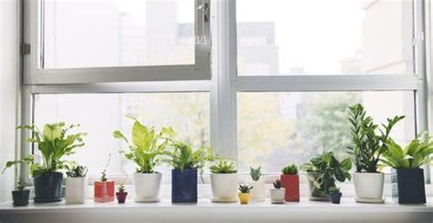 Windowsill Or Window Sill by New Windows How Much Do They Cost On Average
