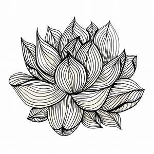 Lotus Flower, Black and white, Nature, Organic design ...