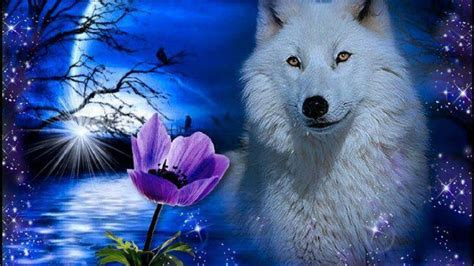 Blue And Purple Wolf Wallpaper by Blue Moon And Wolf Wallpapers Top Free Blue Moon And