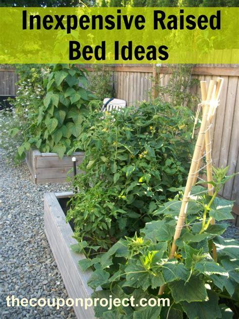 Garden coffee ⭐ , russia, tyumen, ulitsa respubliki, 65: How to Use Coffee Grounds in Your Garden