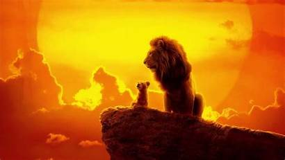 Lion King 4k Wallpapers Movies Disney Simba