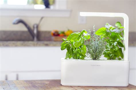 7 creative diy indoor herb garden designs you re sure to