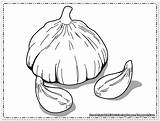 Coloring Pages Garlic Print Printable Onions ثوم sketch template