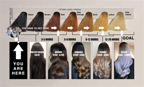 This Diagram Will Help You Price & Time Black To Blonde ...