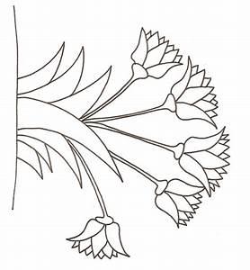 Dessin Fleurs De Lotus : fleurs facile a dessiner ~ Dode.kayakingforconservation.com Idées de Décoration