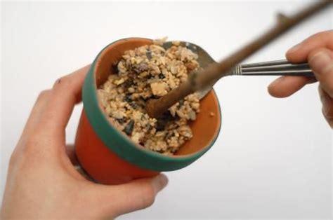 vogelfutter selber machen rezept vogelfutter selber machen anleitung und rezept