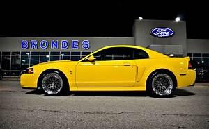03-04 svt cobra - Google Search   Mustang cobra