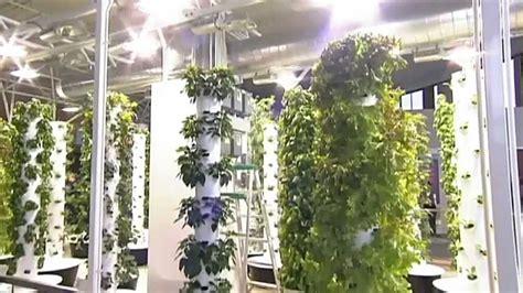 Vertical Garden Chicago by Future Growing 174 Tower Garden 174 Farm At O Hare International