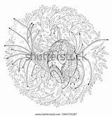 Drawing Fish Algae Tropical Midst Freehand Coloring sketch template