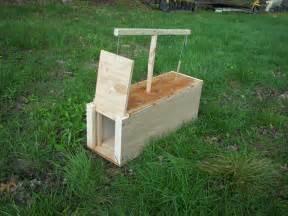 Homemade Box Trap Plans
