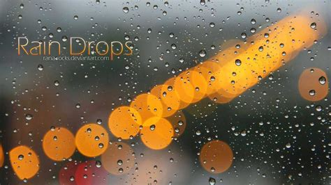 Animated Raindrops Wallpaper - 15 raindrop hd psd images water drop desktop wallpaper