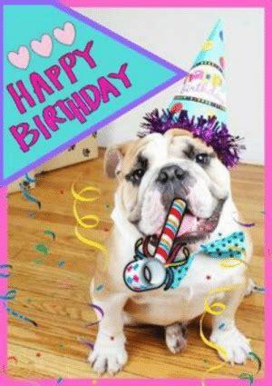 happy birhday happy birthday memes funny french bulldogs