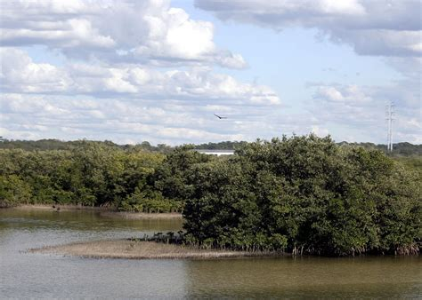 anclote river tarpon springs fl bridge east alt pinellas site looking wikipedia hundreds toxic superfund trouble own