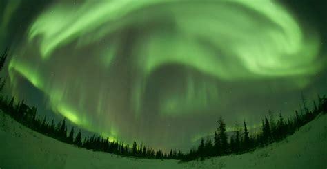 northern lights tours canada alaska adventure travel arctic wildlife tours