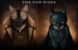 batman cat what superheroes and villains would look like as cats